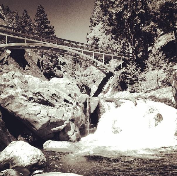 Bridge Cabin